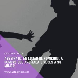 ASESINATO VIOLENCIA DE GÉNERO. Abogado Murcia.