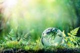 Abogados de Medio Ambiente
